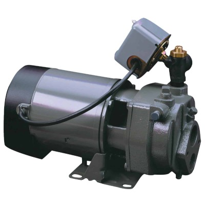 Do it Best 1 HP Cast Iron Water Conventional Well Jet Pump
