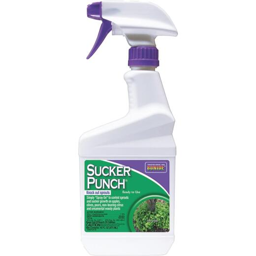 Bonide Sucker Punch 16 Oz. Ready-To-Use Sprout Control Vegetation Killer
