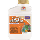 Bonide 16 Oz. Liquid Concentrate Copper Fungicide Image 1
