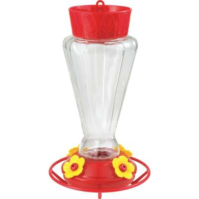 More Birds 28 Oz. Glass Royal Hummingbird Feeder