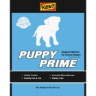 Kent Puppy Prime 20 Lb. Dry Dog Food Image 1