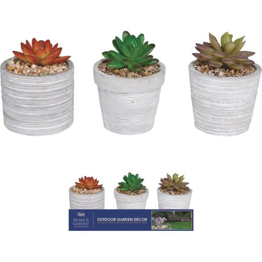 Alpine 5 In. Resin Decorative Succulent Pot Lawn Ornament